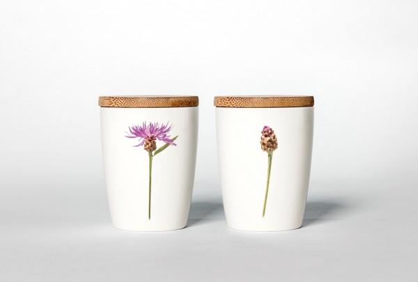 Becher Flockenblume