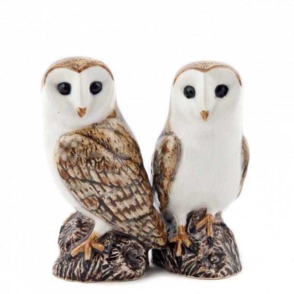 65871--Salz+Pfeffer Barn Owl