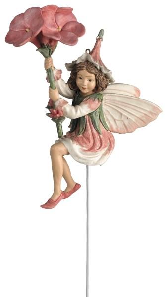 Flower Fairy Box Phlox