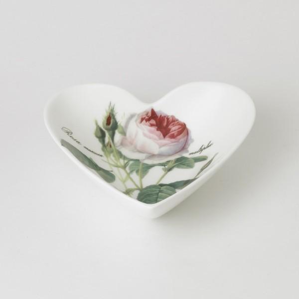 298768 Herzschale Redoute Rose
