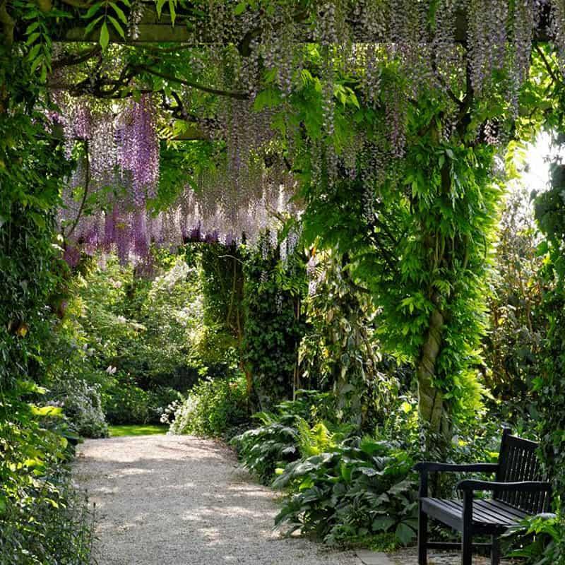 Der Teichgarten