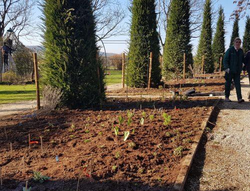 Yellow Brick Road: Pflanzarbeiten beendet – jetzt darf alles wachsen