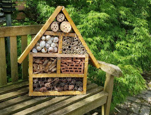Das selbstgebaute Insekten Haus