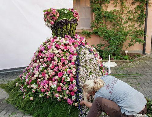 Update zum heutigen Rosenfest
