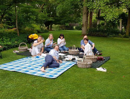 Das erste Sommer-Picknick